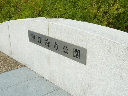 Midori5